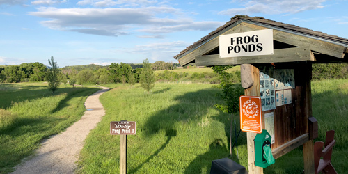 Frog Ponds Trailhead in Lewistown, Montana