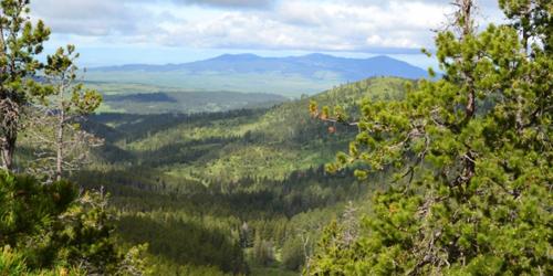 Collar Peak Trail