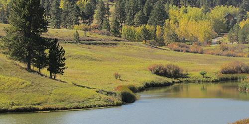 Hanson Creek Dam