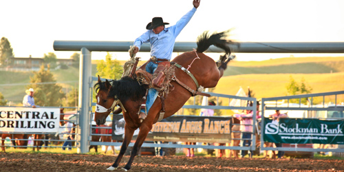Canceled - Central Montana RAM Pro Rodeo